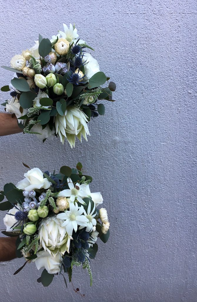 love, hope, flowers, lhflowers, wedding flowers, flowers, Sydney, Sydney florist, white, flowers, white, king, proteas, long, lasting, flowers, tulips, native, flowers, flannel, flowers, roses